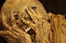 mummyfacepalm-660x330.jpg