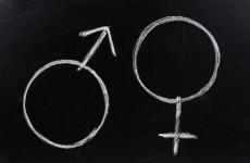 A CEU nem egyetem, a gender-elmélet nem tudomány