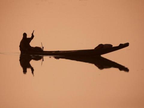 Fotó: Danish Ismail: Kora reggeli halászat, Dal-tó, Kasmíri-völgy, Srinagar, 2017. december 06. © Reuters/Danish Ismail