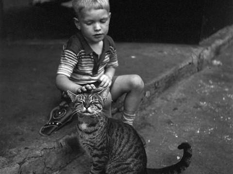 Fotó: Vivian Maier: New York 1954 © Maloof Collection