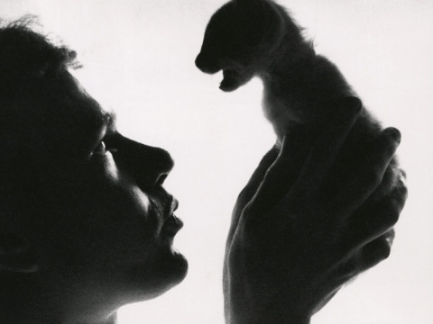 Fotó: Edward Wallowitch: Andy Warhol Holding Kitten, 1957 © Estate of Edward Wallowitch
