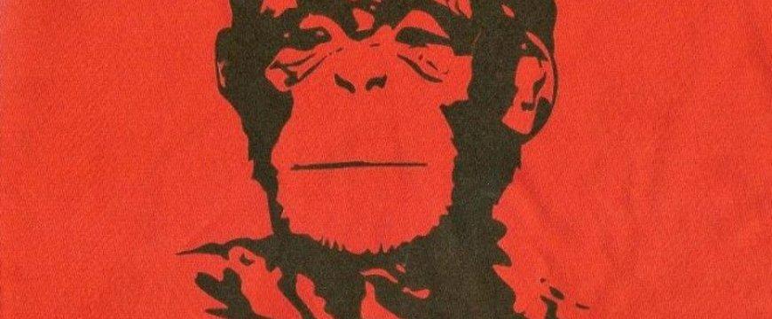 viva-la-evolucion-che-guevara-as-monkey-660x330.jpg