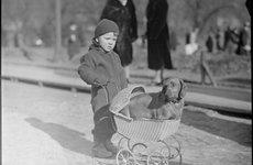 Fotó: Leslie Jones: Boston, USA, 1934 © Leslie Jones/Courtesy of the Boston Public Library